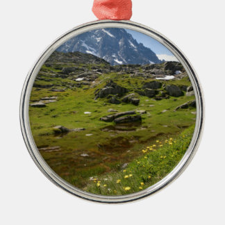The Alps mountain range - Stunning! Silver-Colored Round Decoration