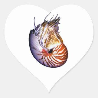 THE AMAZING NAUTILUS HEART STICKER