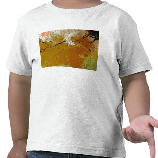The Amazon Rainforest Tee Shirt