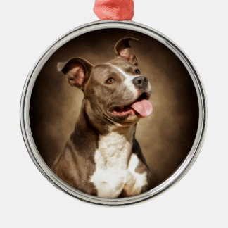 The American Blue Pit-Bull Christmas Ornament