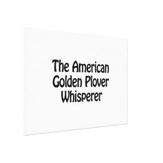 the american golden plover whisperer canvas print