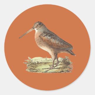 The American Woodcock(Rusticola minor) Round Sticker