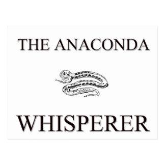 The Anaconda Whisperer Postcards