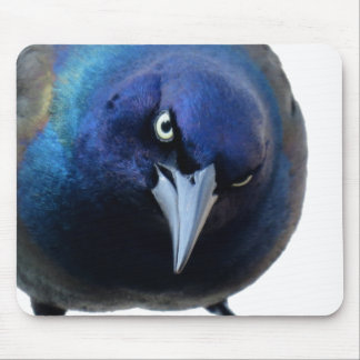 The Angry Grackle Mouse Mat