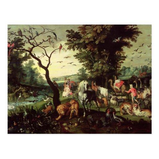 The Animals Entering Noah's Ark Postcards