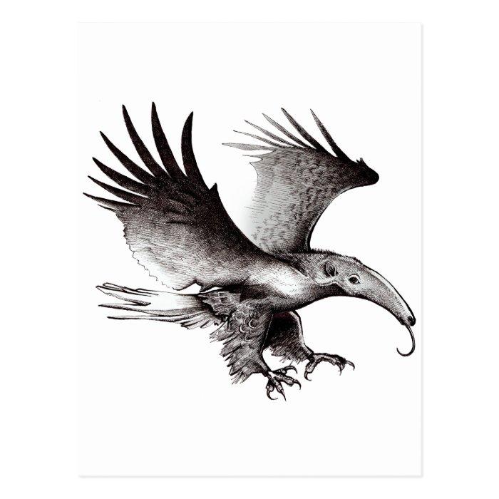 The Ant Eagle Postcard