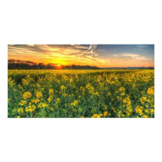 The April Farm Custom Photo Card