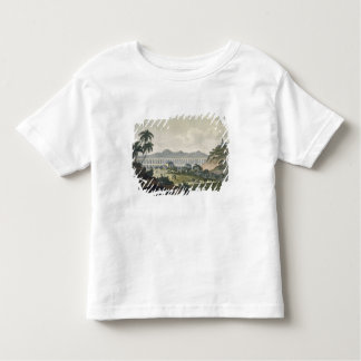 The aqueduct in Rio de Janeiro (colour engraving) Toddler T-Shirt