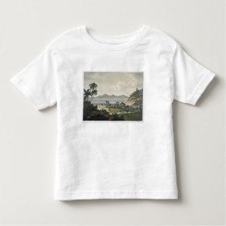 The aqueduct in Rio de Janeiro (colour engraving) Tshirt