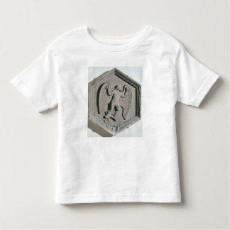 The Art of Flight, Daedalus, hexagonal Toddler T-Shirt