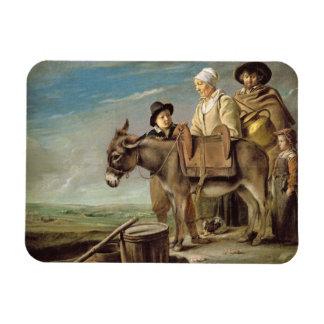 The Ass (oil on canvas) Rectangular Photo Magnet