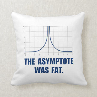 The Asymptote was Fat Throw Pillows