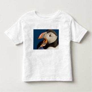 The Atlantic Puffin, a pelagic seabird, shown 2 Toddler T-Shirt
