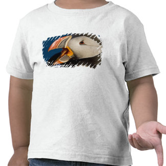 The Atlantic Puffin, a pelagic seabird, shown 2 T-shirt