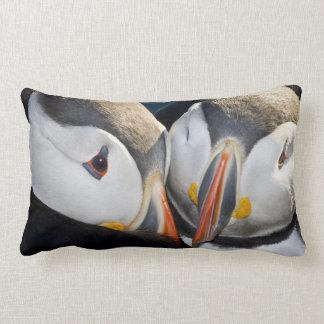 The Atlantic Puffin, a pelagic seabird, shown 3 Lumbar Cushion