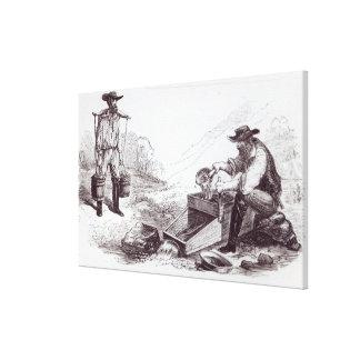 The Australian Gold Diggers Canvas Print