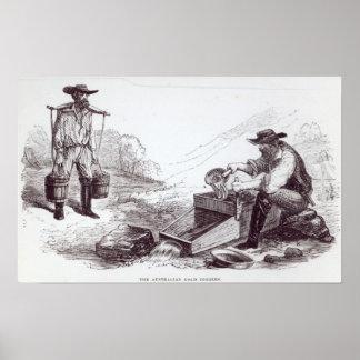 The Australian Gold Diggers Print