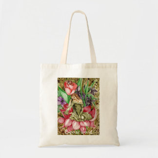 the bag of the fairies