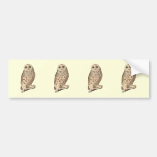 The Barred Owl	(Ulula nebulosa) Bumper Sticker