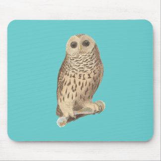 The Barred Owl Ulula nebulosa Mouse Pads