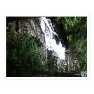 The Basin Franconia New Hampshire Postcard