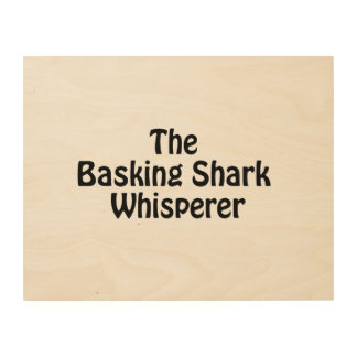 the basking shark whisperer wood canvases