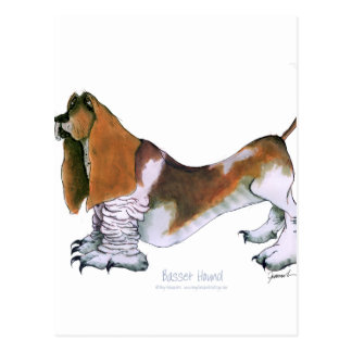 the basset hound, tony fernandes postcard