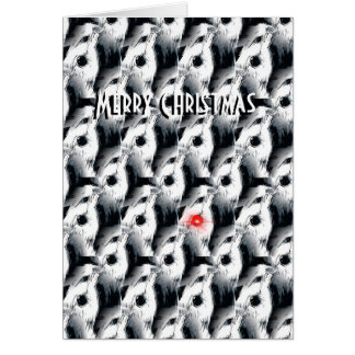 the Bearded Collie Christmas Card