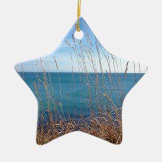 The beautiful Grass and Sea Ceramic Star Decoration