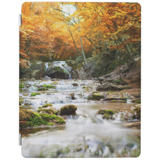 The beautiful waterfall in forest, autumn iPad cover