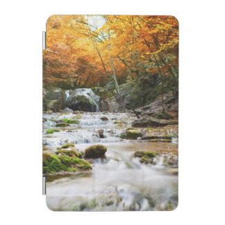 The beautiful waterfall in forest, autumn iPad mini cover