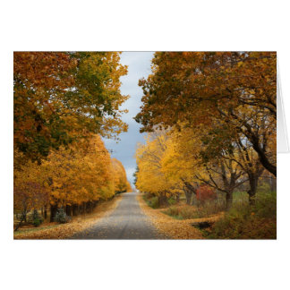 """""""The Beauty of Autumn"""" Greeting Card"""