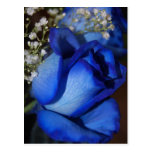 The Beauty Of Blue Postcard