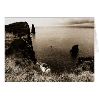 The beauty of silence greeting card