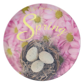 The Beauty of Spring Easter Nest Bird Eggs Plate