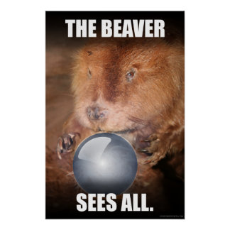 The Beaver Sees All. Poster