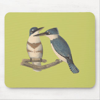 The Belted Kingfisher (Alcedo alcyon) Mouse Pad