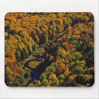 The Big Carp River in autumn at Porcupine Mouse Pad