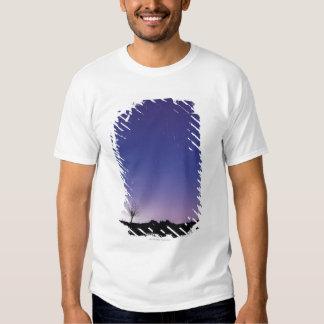 The Big Dipper Tee Shirts