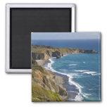 The Big Sur coastline in California, USA Square Magnet