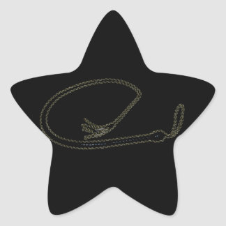 THE BIG WHIP STAR STICKER