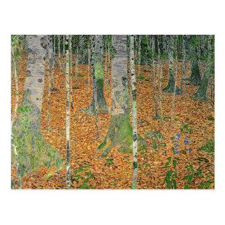 The Birch Wood, 1903 Postcard