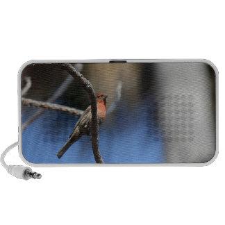 The Bird Laptop Speakers