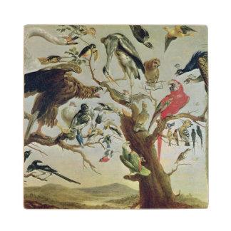 The Bird's Concert Wood Coaster