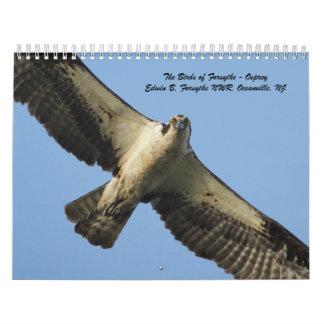 The Birds of Forsythe - Osprey Calendar