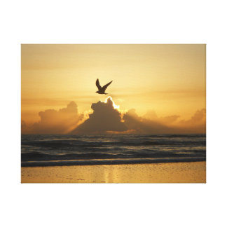 The Birth Of A New Day Gallery Wrapped Canvas