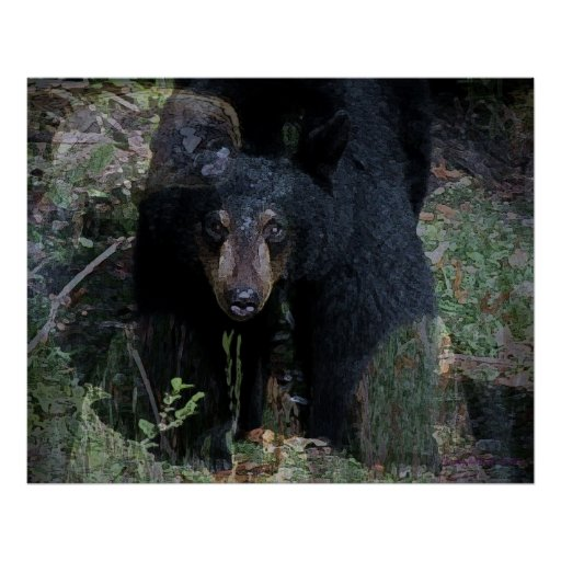 The Black Bear Posters