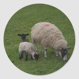 The Black Sheep Round Sticker