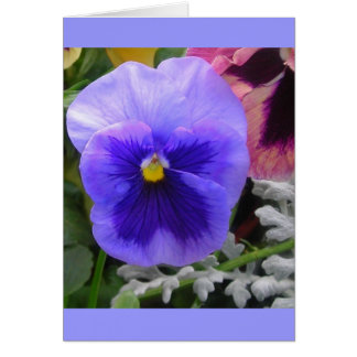 The Blue Pansy Card