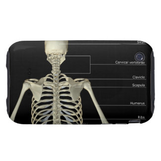 The bones of the upper body iPhone 3 tough covers